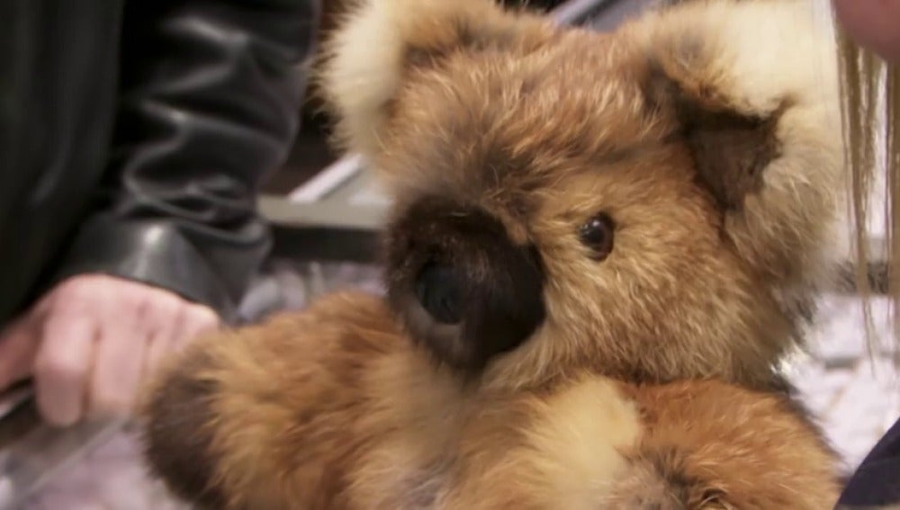 Frame 84.010516 de: ¿Un oso de peluche de 350 dólares?