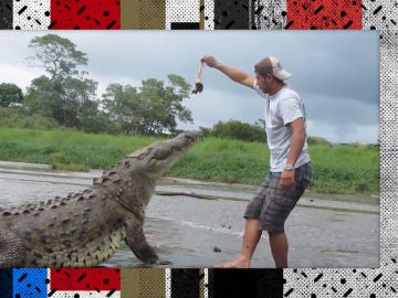 Alimentando un cocodrilo