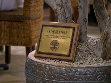 Un árbol para salvar un restaurante