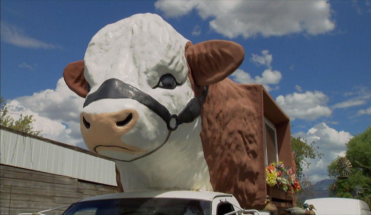 Caravana vaca