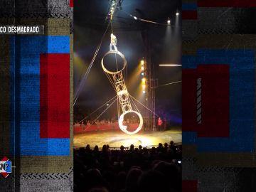 Cuando un circo se desmadra sin control