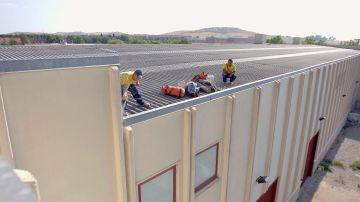 Un panal de avispas complica el trabajo a 11 metros de altura
