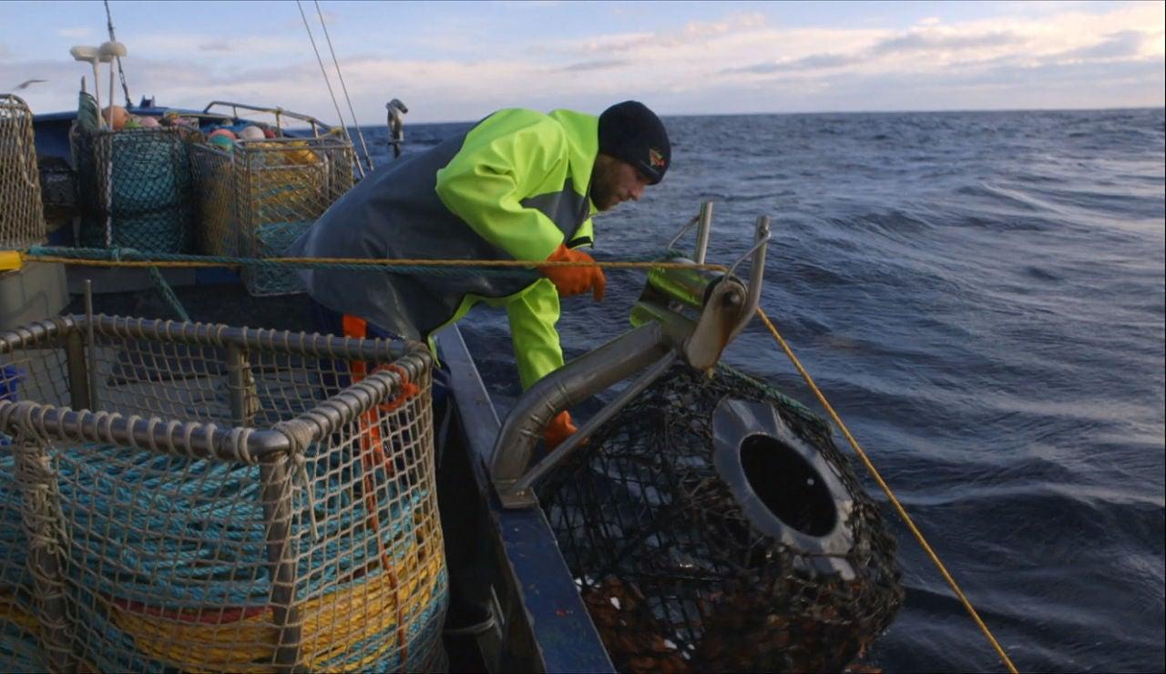 No hay suerte en la pesca de hoy
